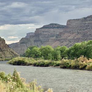 Der nahe gelegene Colorado River.